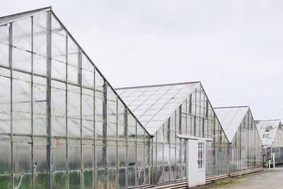 The Greenhouses of Half Moon Bay
