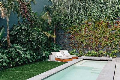 Rooftop courtyard with a pool in a Mexico City home