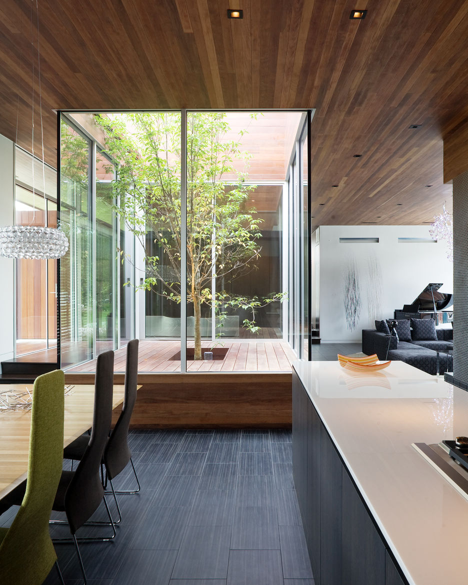 Curved House glass interior courtyard