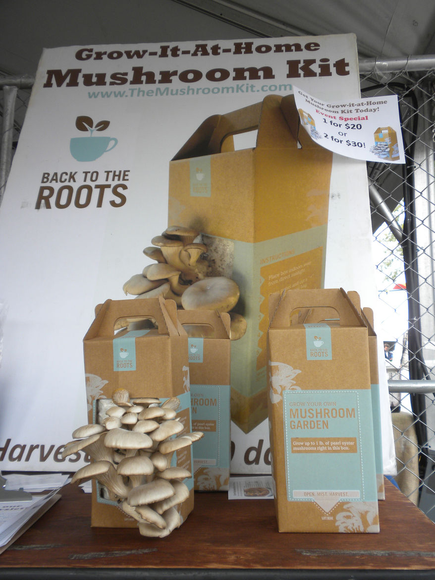 """<a href=""""http://www.bttrventures.com/"""">Back to the Roots Mushroom Kits</a> were a big hit. For $20, you got a box that will sprout a crop of mushrooms within ten days. Each box is reported to grow at least two crops. Perfect for apartment dwellers and ava"""