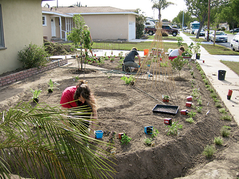 Artist Fritz Haeg is trying to change the way we look at our lawns and illustrate how we might make better use of them. Michael and Jennifer Foti's once unproductive front yard gets a makeover.