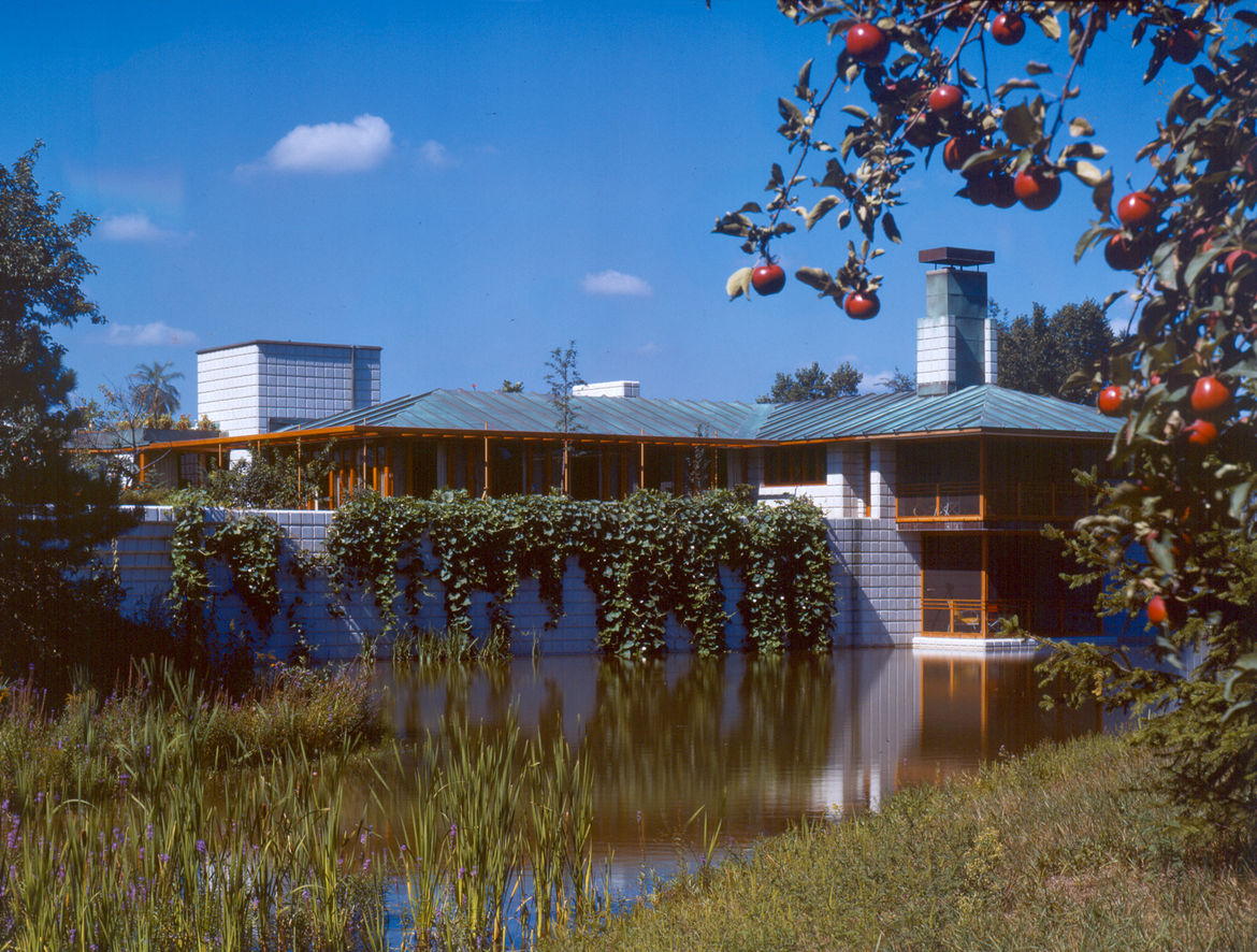 An exterior view of the surrounding yard and marsh of the Alden B. Dow home and studio.
