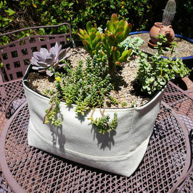 Woolly Pocket's breathable fabric planters, made of recycled plastic bottles, whick water away to avoid root rot and are available in nine different sizes and shapes (ranging from $29 to $247) and three colors that include both freestanding and modular li
