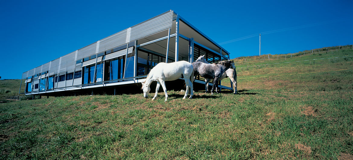 """""""There's a lot of horse talk here, and with this place there is plenty of opportunity for interaction. My horses can play Mister Ed and join right in,"""" says Kropach. Her inquisitive Andalusian steeds regularly socialize with guests via sliding windows alo"""