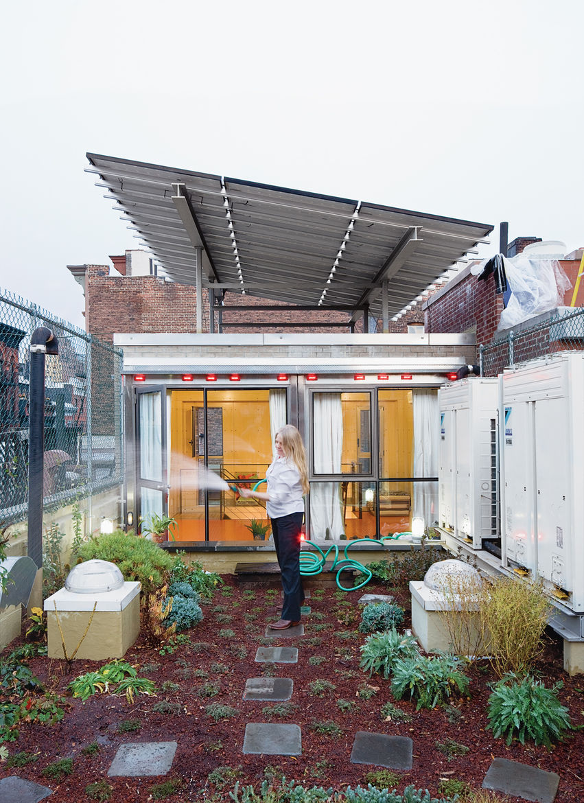 The Weiners' first stab at a decorative green roof went awry when workers installed the fabric membrane incorrectly; the plants didn't thrive, and  soil leached down the drain, causing a backup in the yard below. But with the help of an artist friend—–and