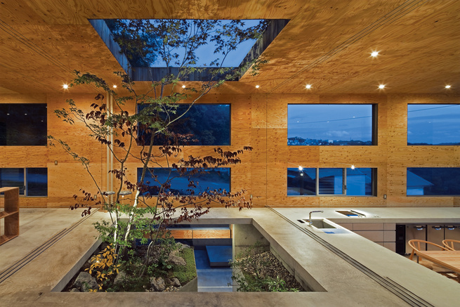 cedar and larch Japanese house with garden