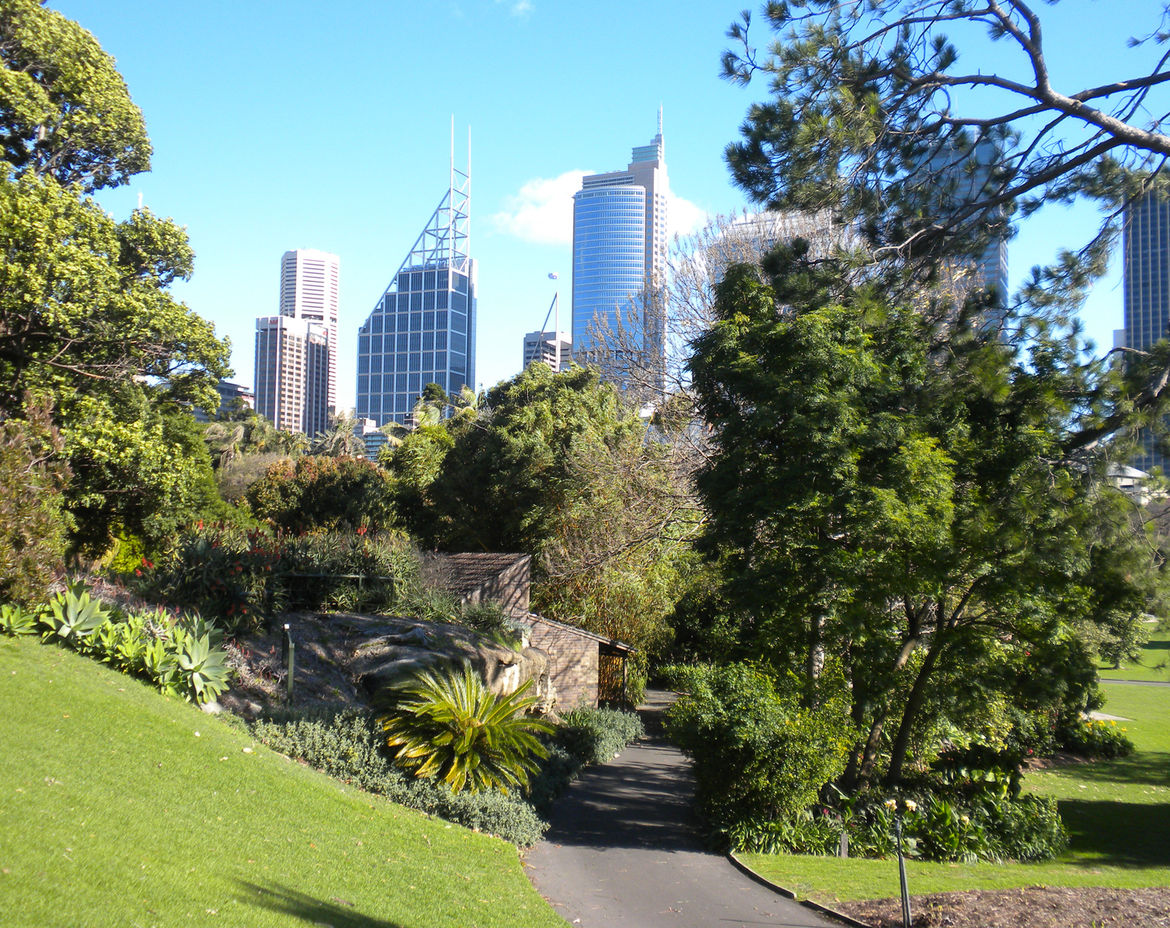 The Royal Botanic Gardens in Sydney Australia