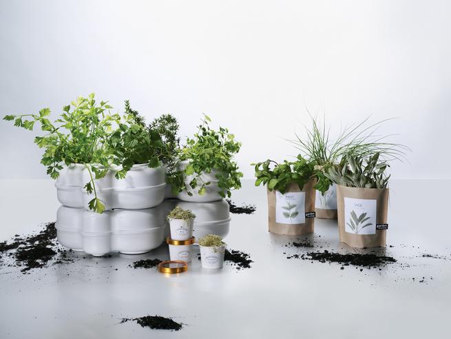 Indoor garden and herb kits