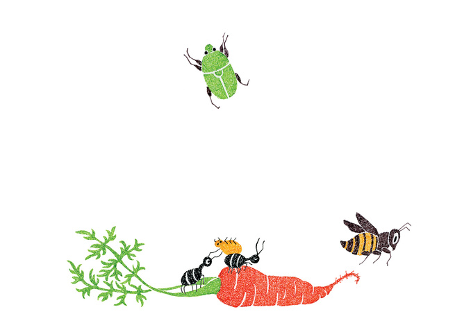 Pests illustration by Malin Rosenqvist