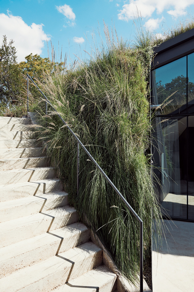 Living green roof stairway with native grasses