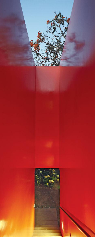 Casa serpiente red wall