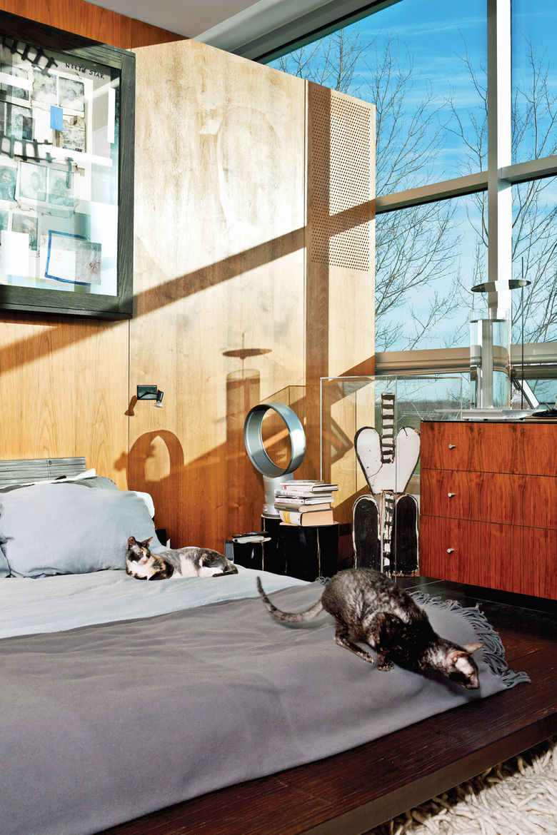 gray bed with cats in master bedroom