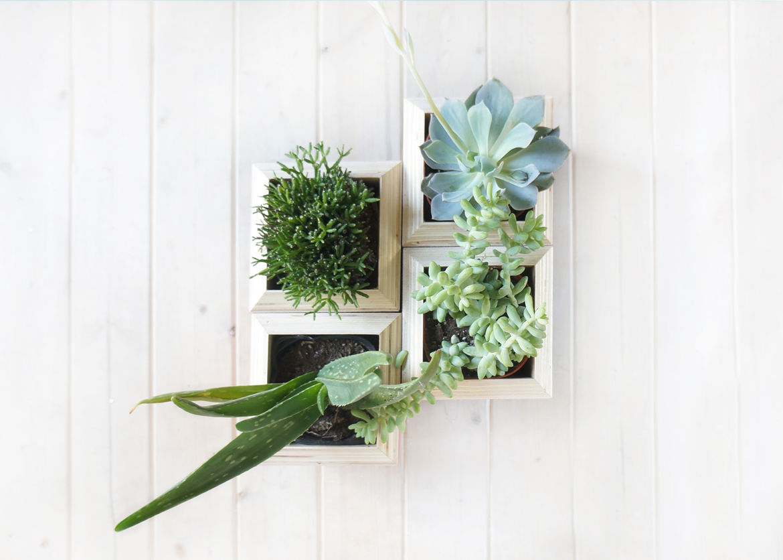 Yield Planter Boxes