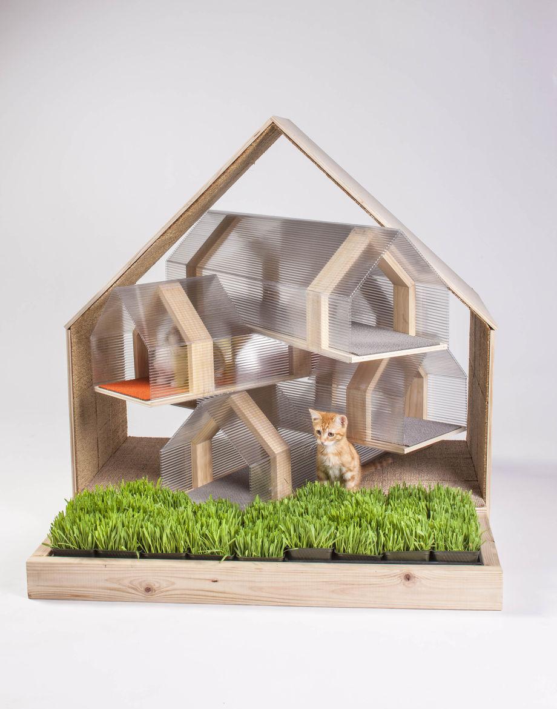 HOK cat shelter