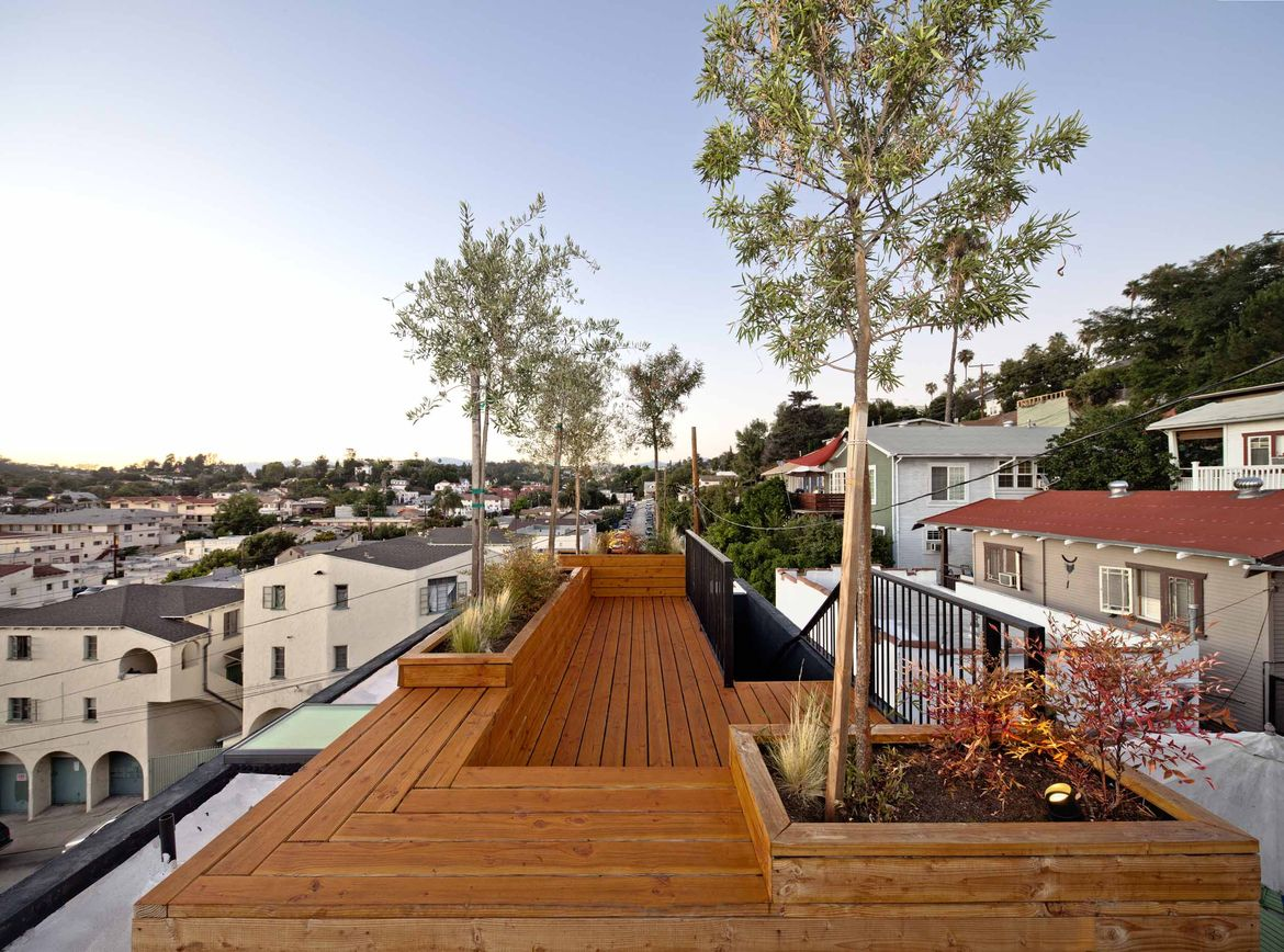Wooden roof deck with olive trees in Echo Park