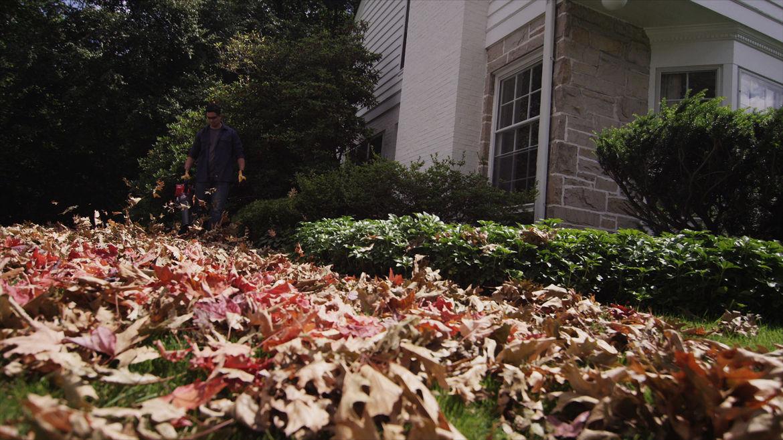 Troy Bilt high-powered blower clears leaves.