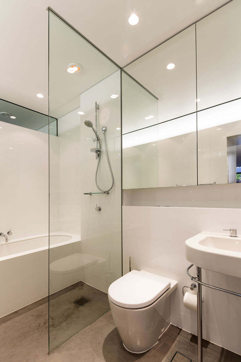 Annandale Home addition lower level bathroom