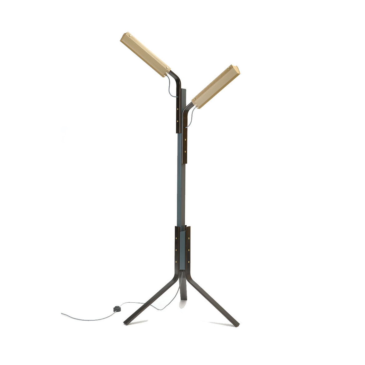 Floor lamp with industrial and organic inspiration
