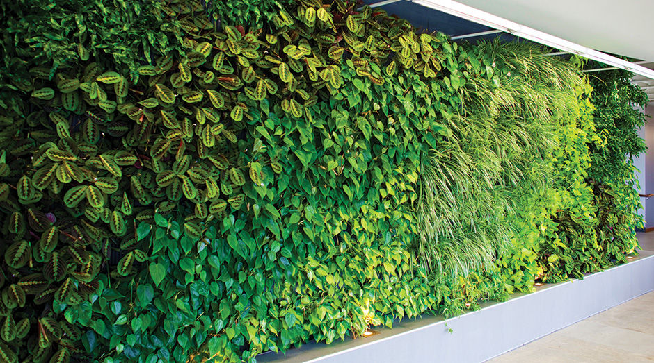 Woolly Pocket professional green wall