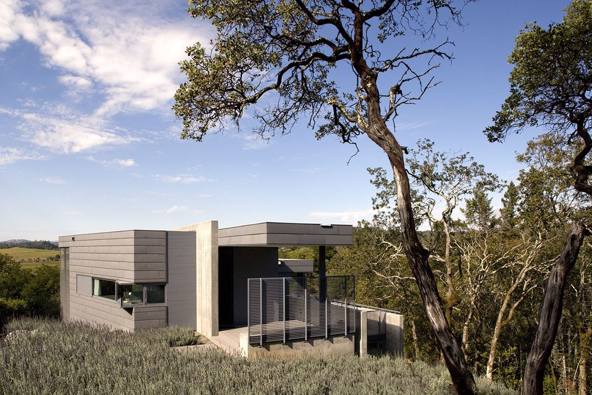 Olive Grove House exterior decks