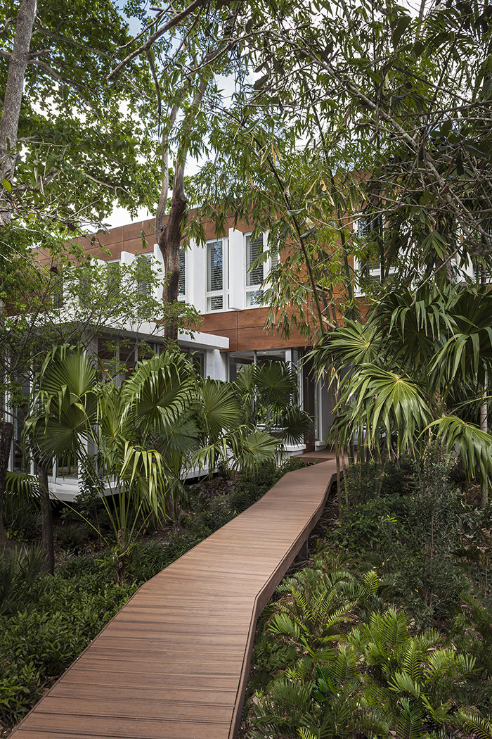 Wooden boardwalk leading to a modern home on a lush site