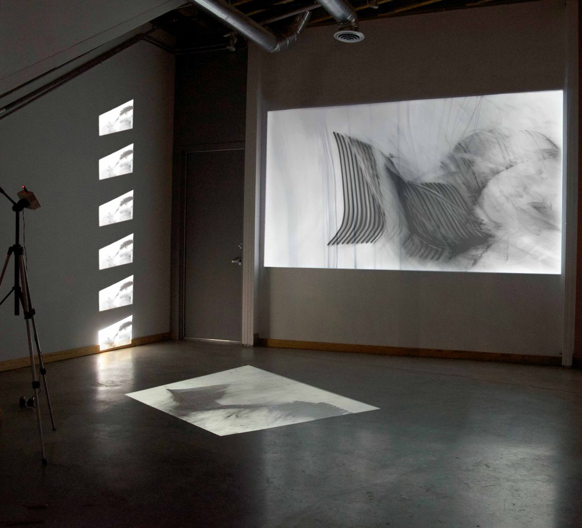Bojana Ginn video installation