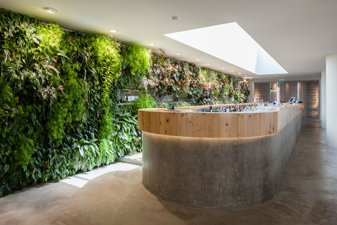 A restaurant with a vertical garden wall and a large skylight