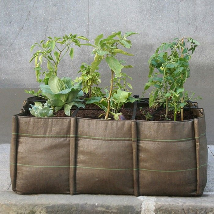 Three-compartment planter for indoor and outdoor use