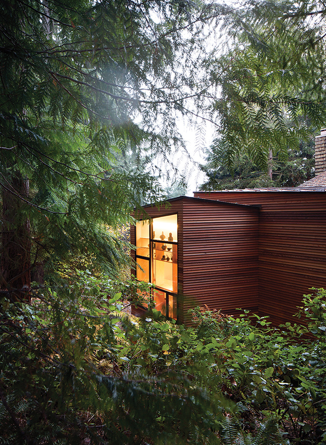 Modern addition with a cedar siding facade
