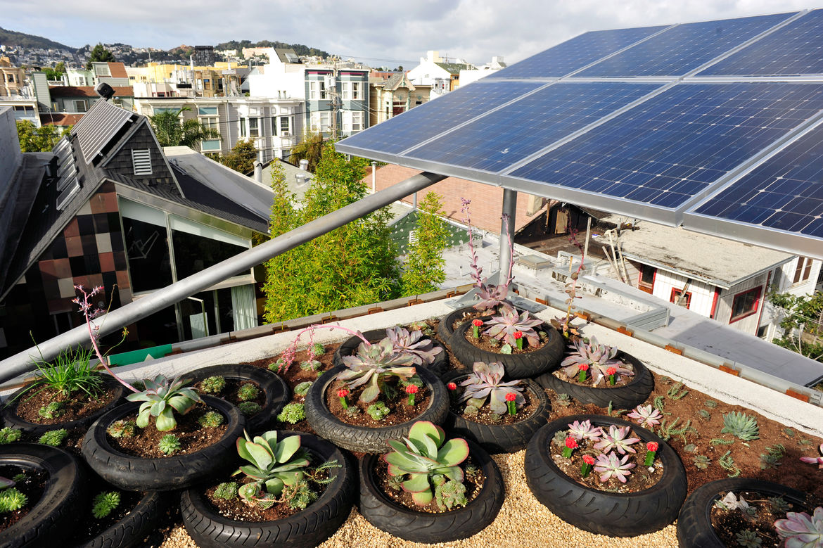Green roof and solar panels at a San Francisco net-zero cottage