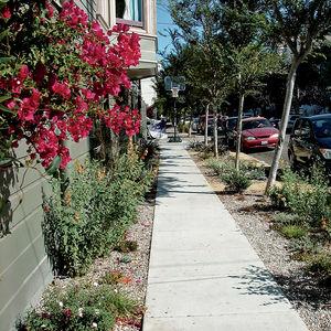 sidewalk garden after one thumbnail