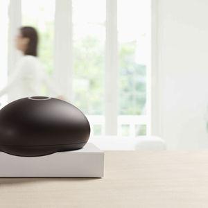 Dojo home security device