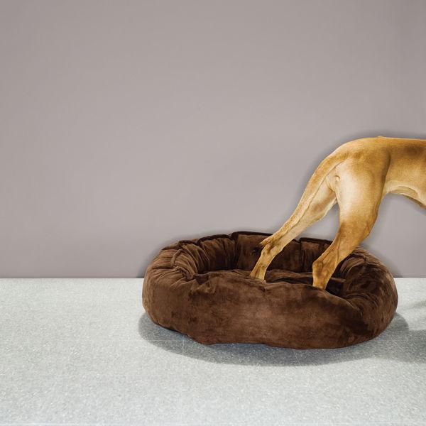 dog beds big shrimpy nest bed