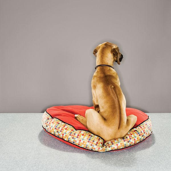 dog beds crypton dog bed