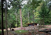 salt spring island cabin home exterior