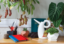 Modern gardening tools and accessories