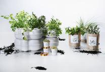 indoor garden and herb kits assortment view b