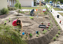 edible estates lakewood california regional prototype garden 2 foti michael jennifer in progress planting